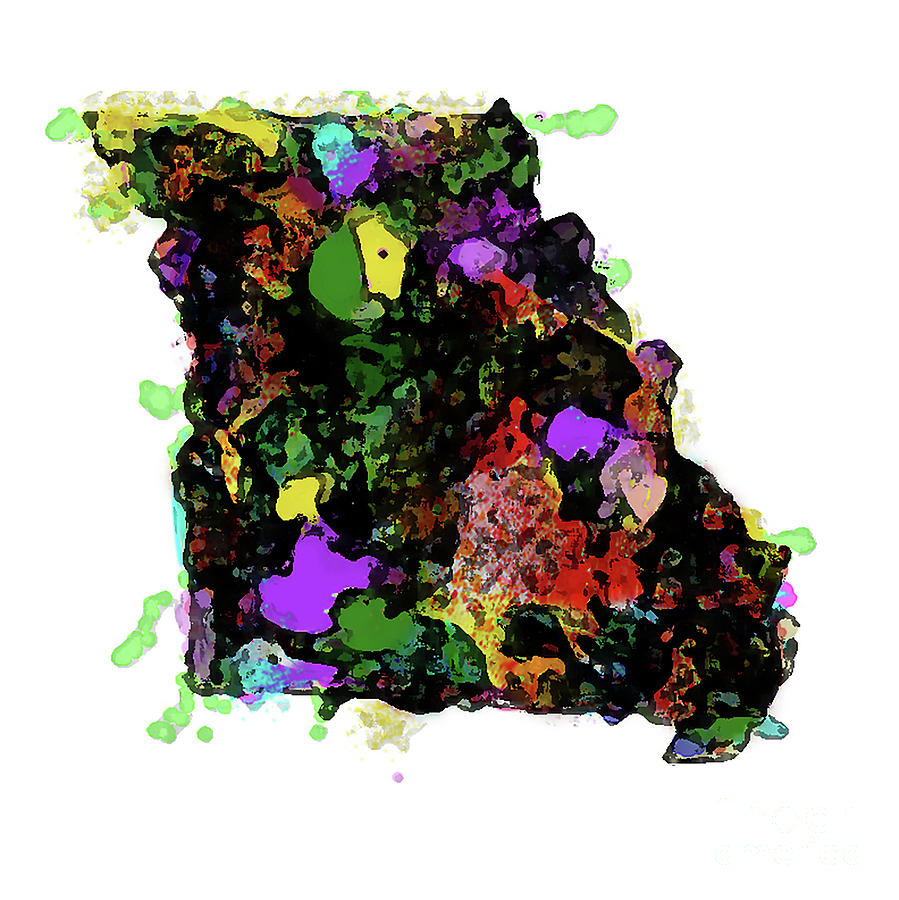 State Of Missouri Abstract 1 by Genevieve Esson