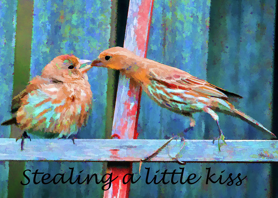 Stealing a Little Kiss by Tim Kathka