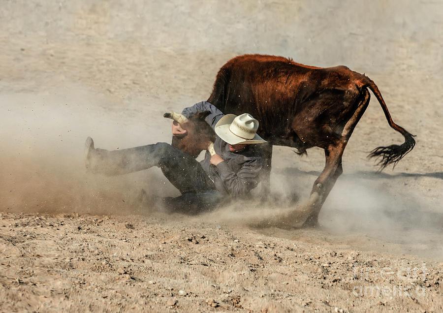 Steer Wrestler by Diane Diederich