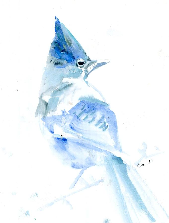 Steller Jay Painting by Cher Clemans