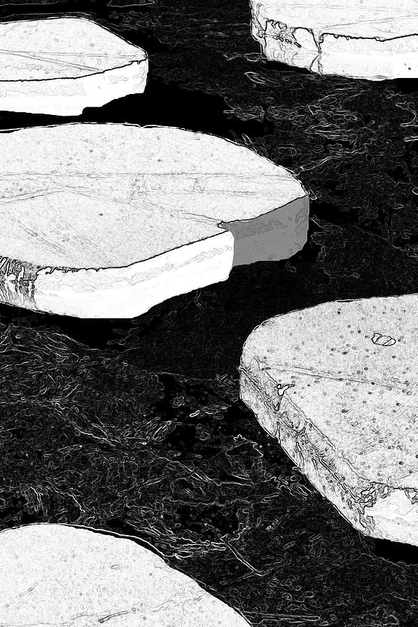 Black And White Photograph - Stepping Stones by Siene Browne
