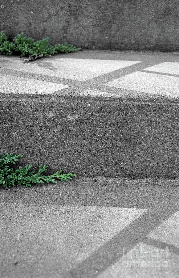 Pattern Photograph - Steps by Nicki Hoffman