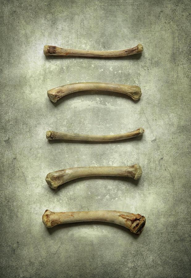 Still life with bones by Jaroslaw Blaminsky