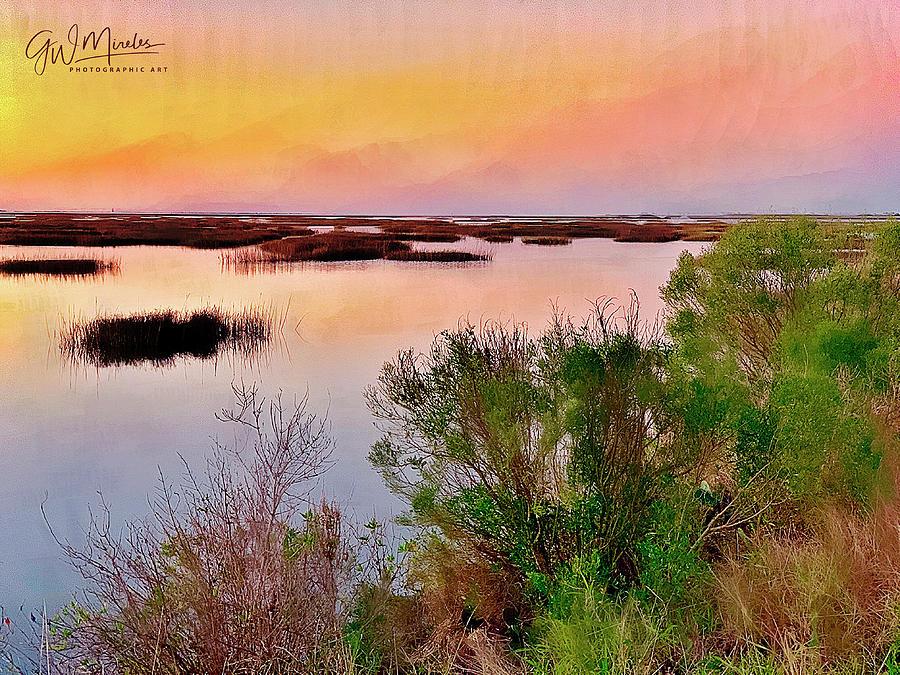 Stillness of the Marsh by GW Mireles