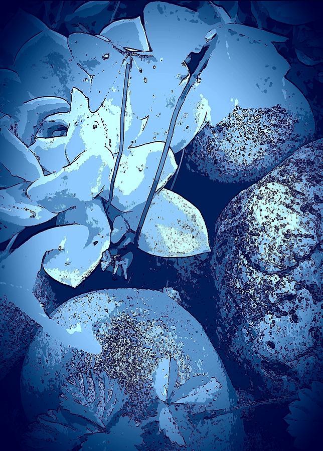 Stone Rose Digital Art