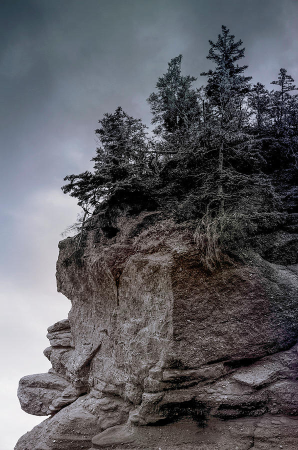 Stonefaced Photograph