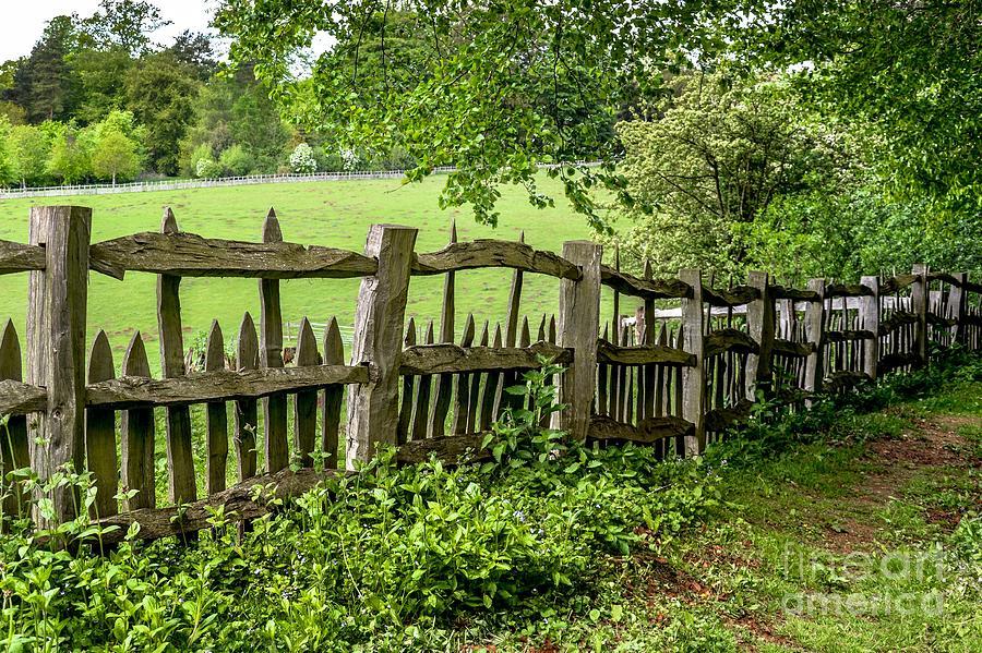 Stowe Gardens Fence by David Meznarich