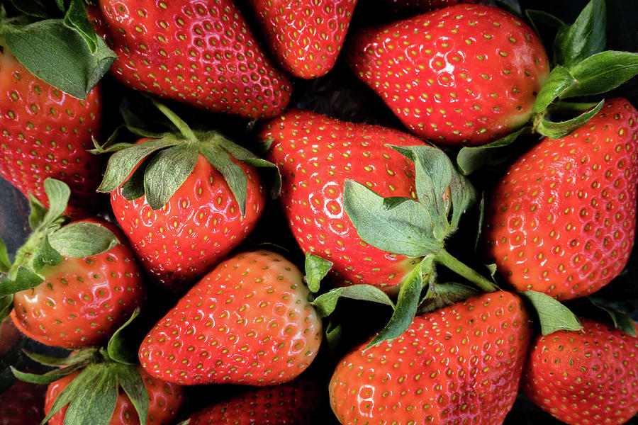 Strawberrries Photograph