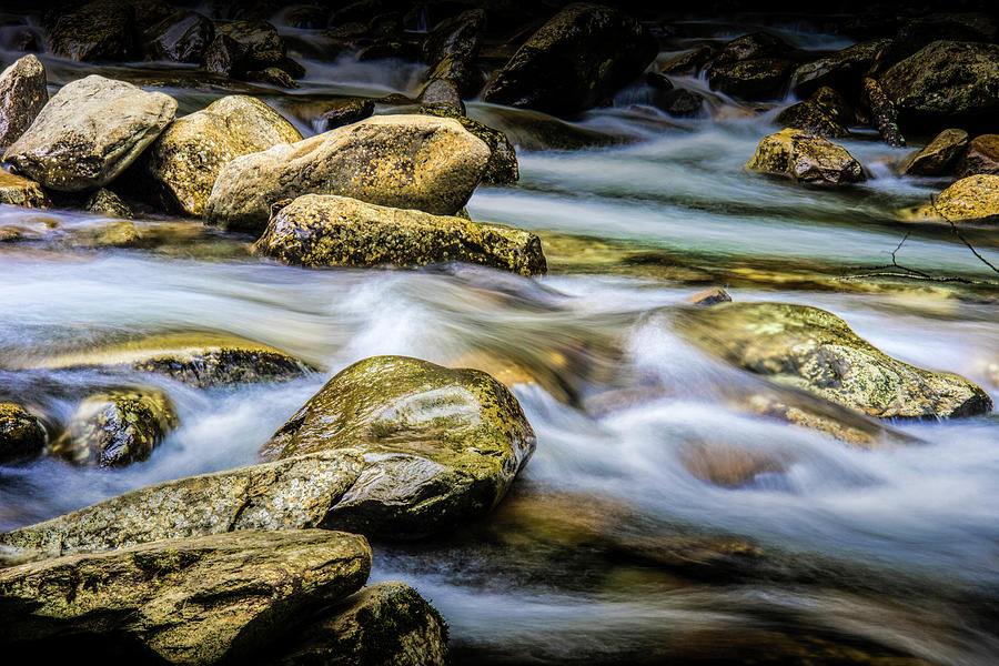 Stream in The Smoky Mountains by Randall Nyhof