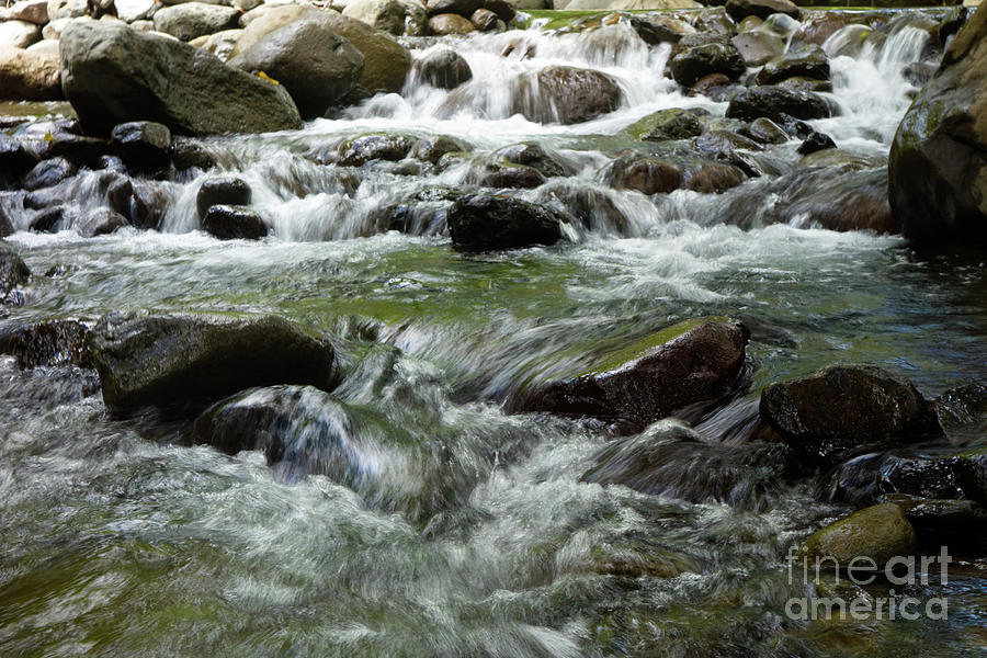 Stream with Flowing Water Over Rocks by Wilko Van de Kamp