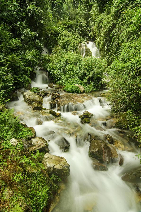 Streams Of Eden Photograph