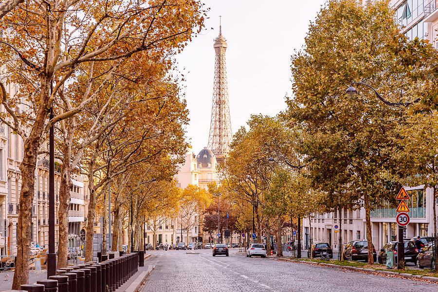 Street in Paris with Eiffel Towers and autumn trees, France Photograph by Alexander Spatari