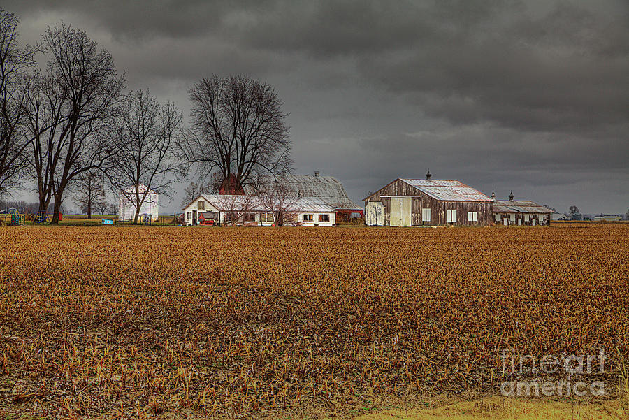 String of Farm Buildings  by Larry Braun