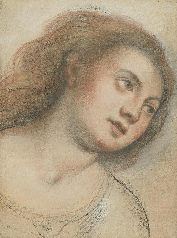 Study for Female Head  by Carlo Francesco Nuvolone