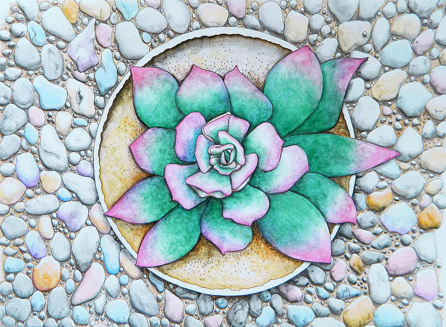 Watercolour Painting - Succulent by Judy Horan