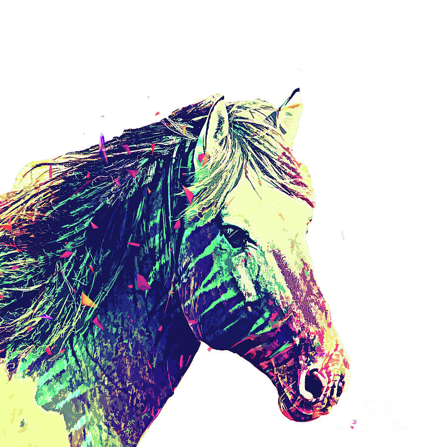 Horse Digital Art - Sugar Horse  by Trindira A