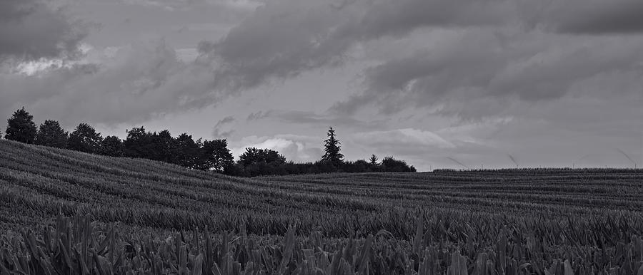 Landscape Photograph - Summer clouds by Karine GADRE