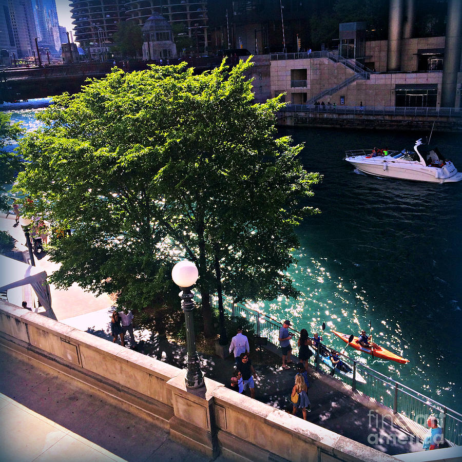 Summer Days On The Chicago River Photograph