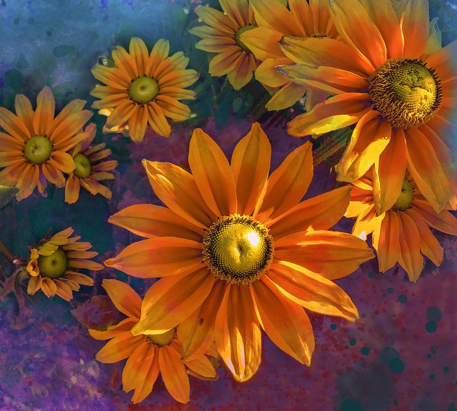 Summer Flowers Photograph
