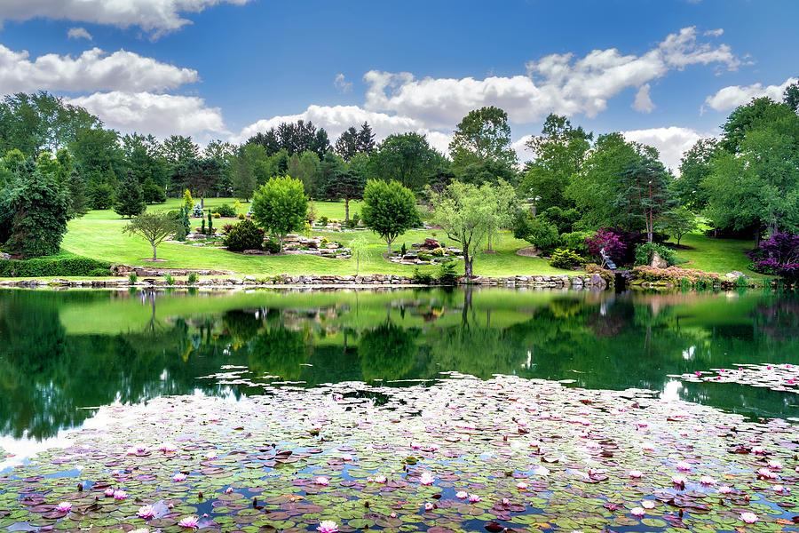 Summer Gardens by Tom Mc Nemar