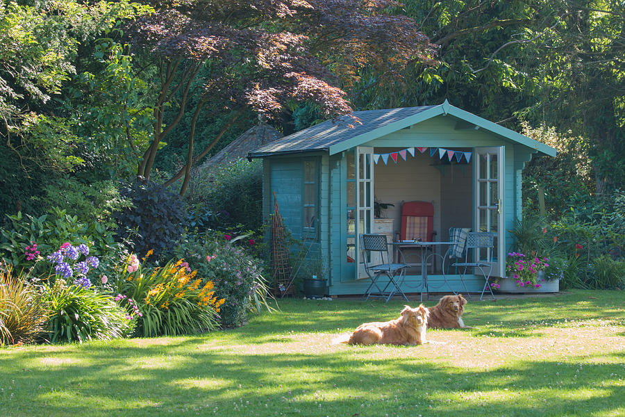 Summer in the garden with the summer house and basking dogs Photograph by Sandra Clegg