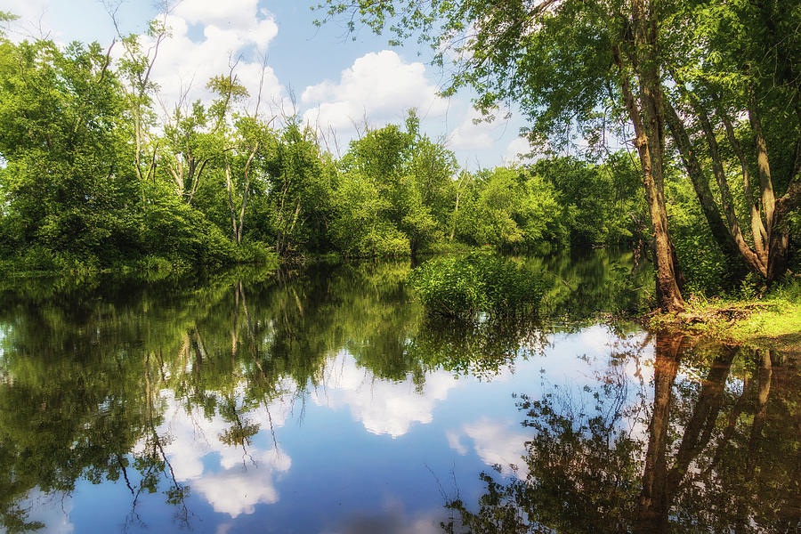 Summer on the Concord River by Sylvia J Zarco