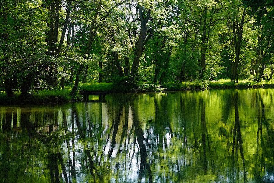 Summer River Tree Reflections - Winterton Park L B Digital Art