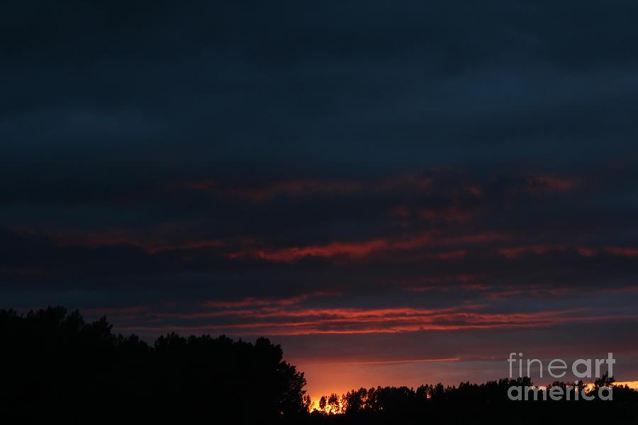 Summer Sunset by Ann E Robson