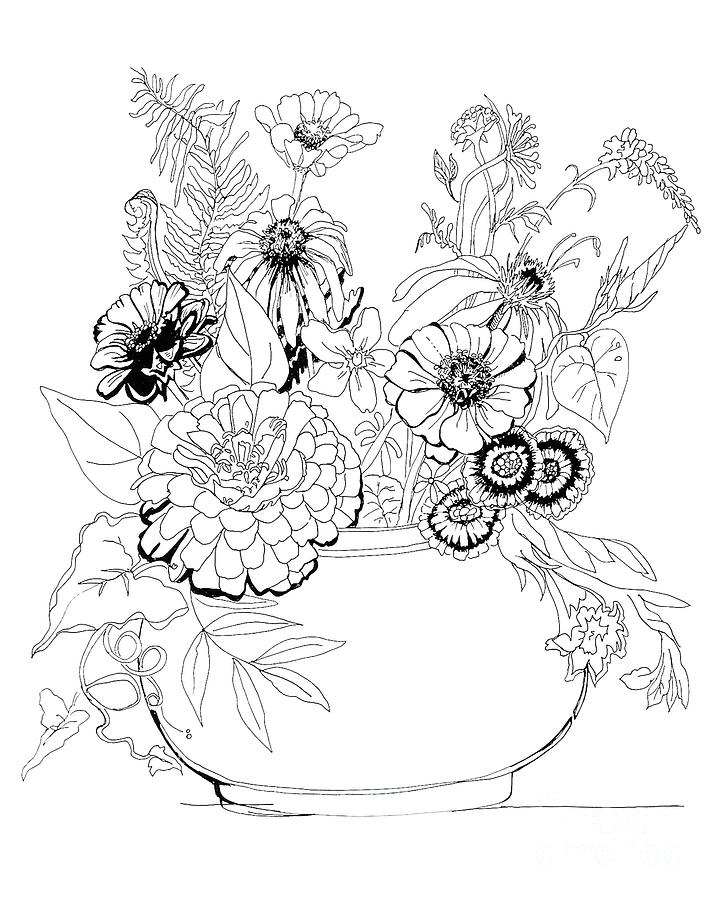 Summer Zinnias Drawing