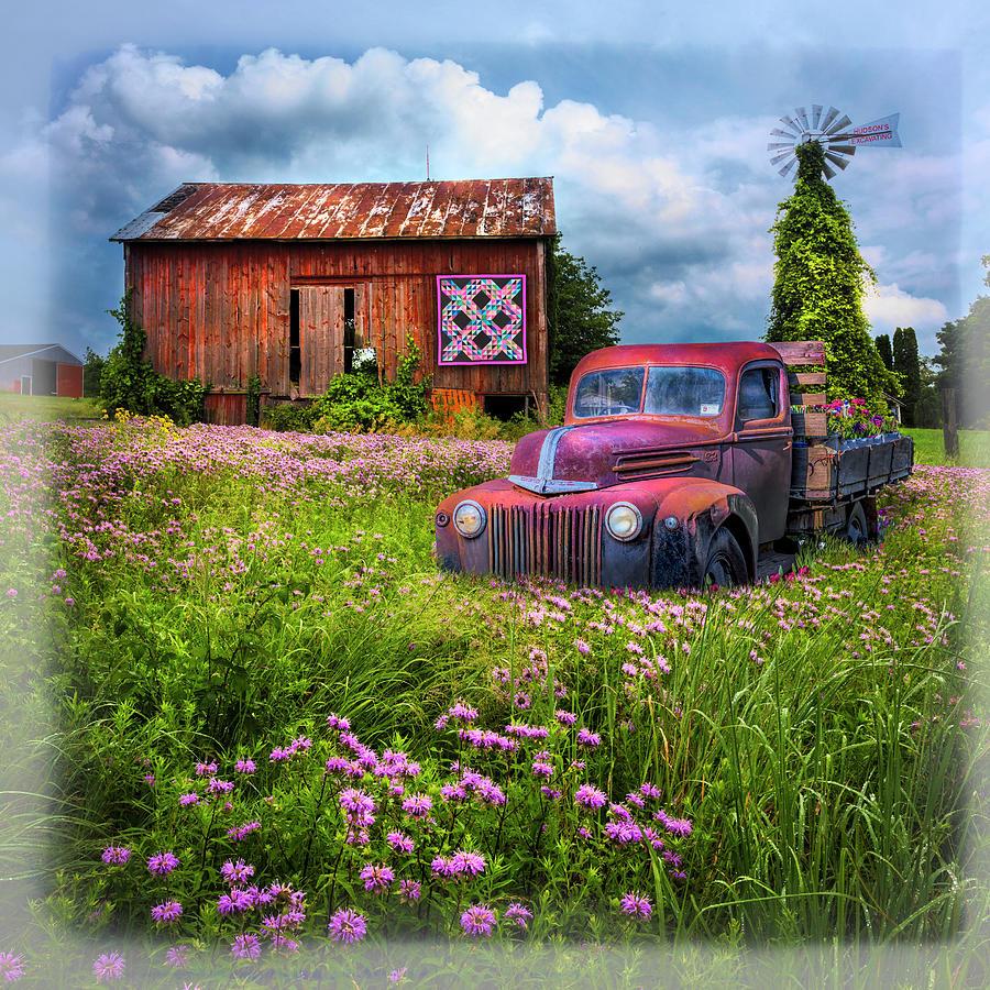 Summerfields Bordered by Debra and Dave Vanderlaan