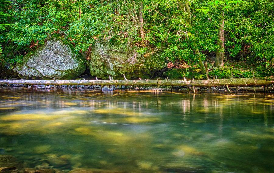 Creek Photograph - Sun Dappled Creek by Jim Cook