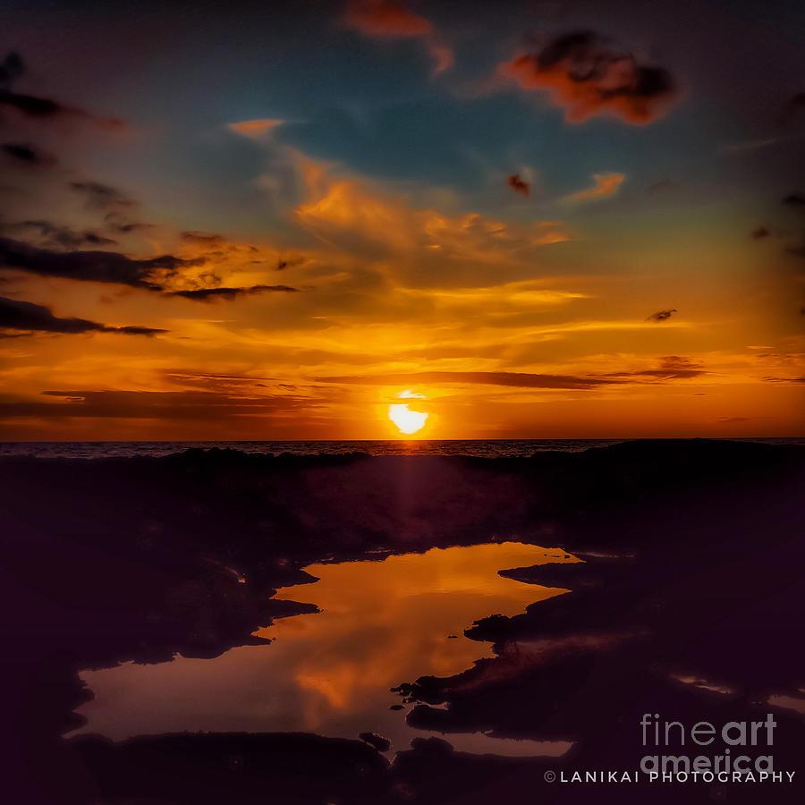 Sun Gazed Photograph