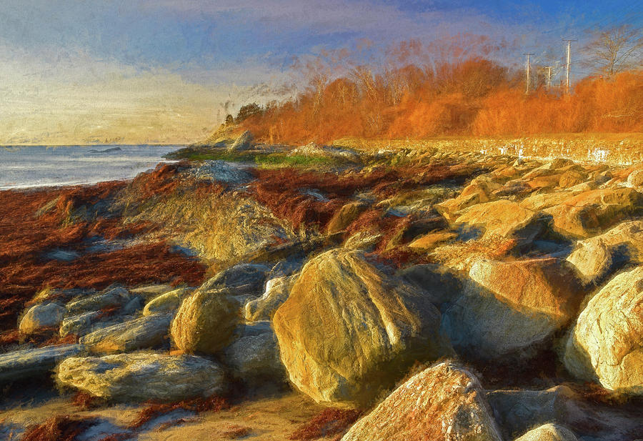 Sun, Rocks, and Sachuest Beach by NANCY DE FLON