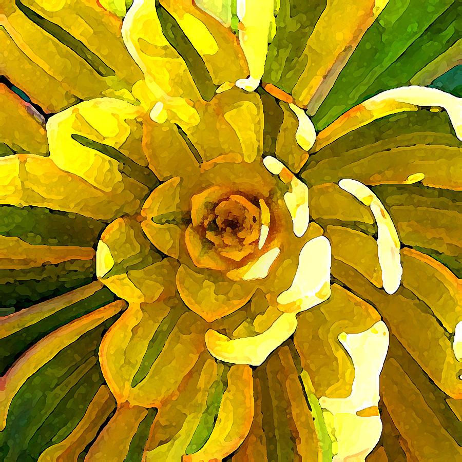 Sunburst Succulent Square Painting