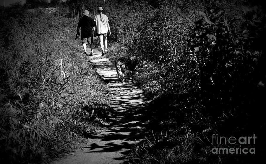 Sunday Morning Family Walk Photograph