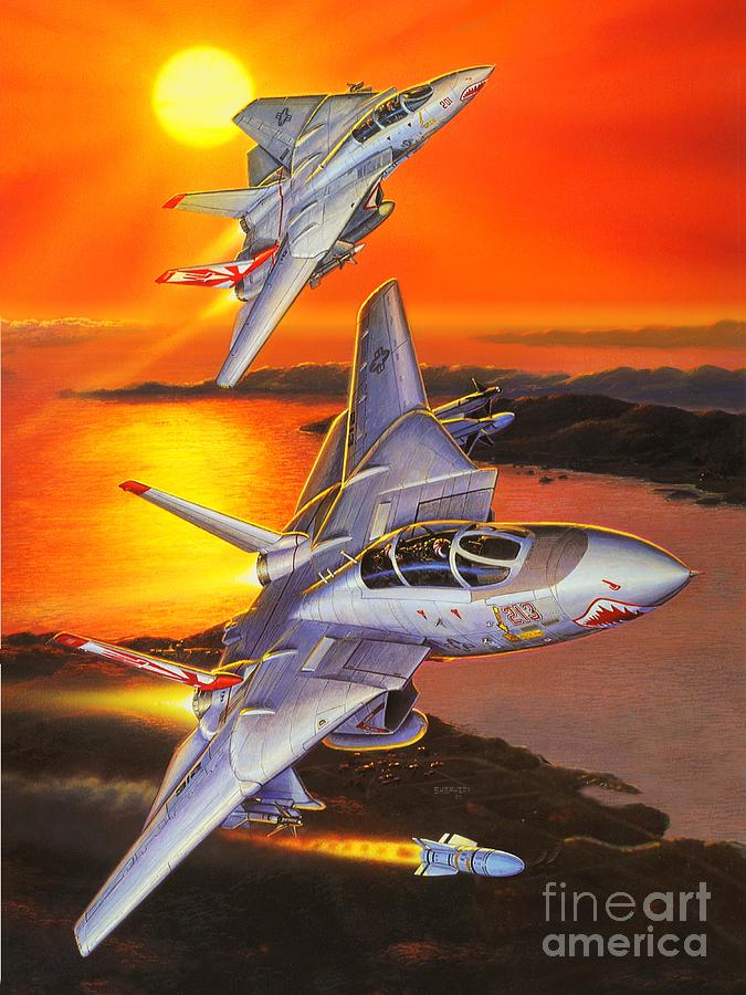 F-14 Tomcat Painting - Sundowner Tomcats by Stu Shepherd