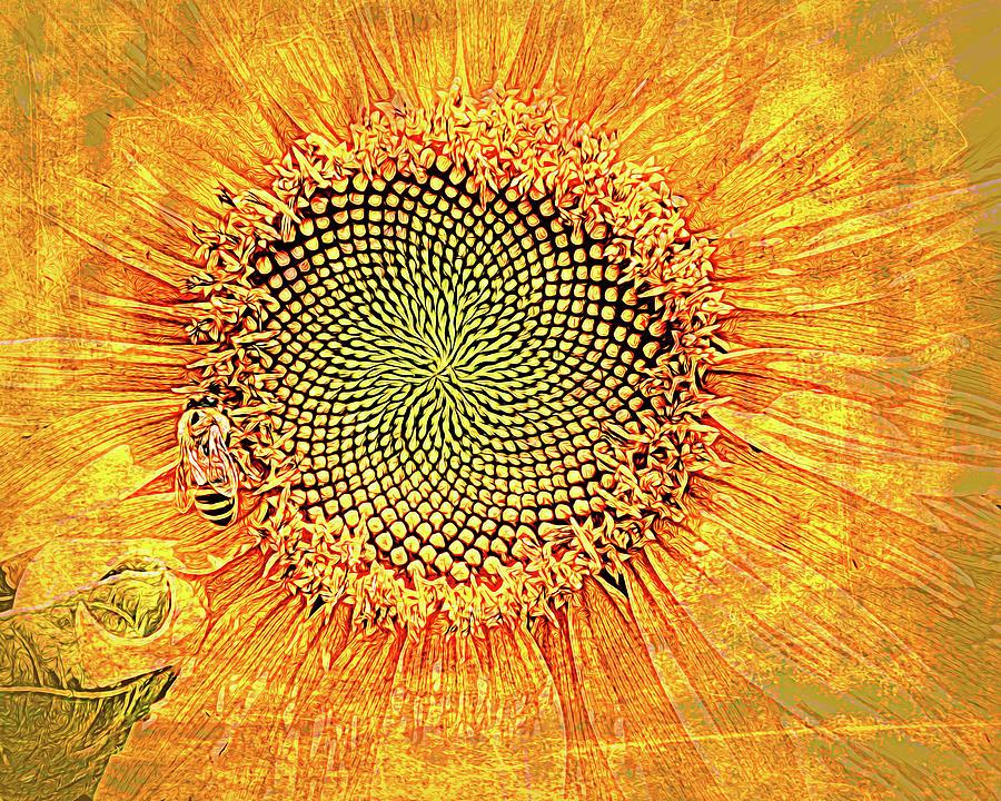 Sunflower2020 Photograph