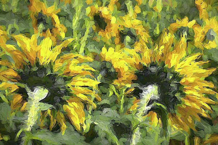 Sunflowers Turned by Alice Gipson