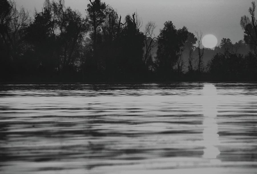 Sunrise At Dacus Lake In Arkansas Photograph