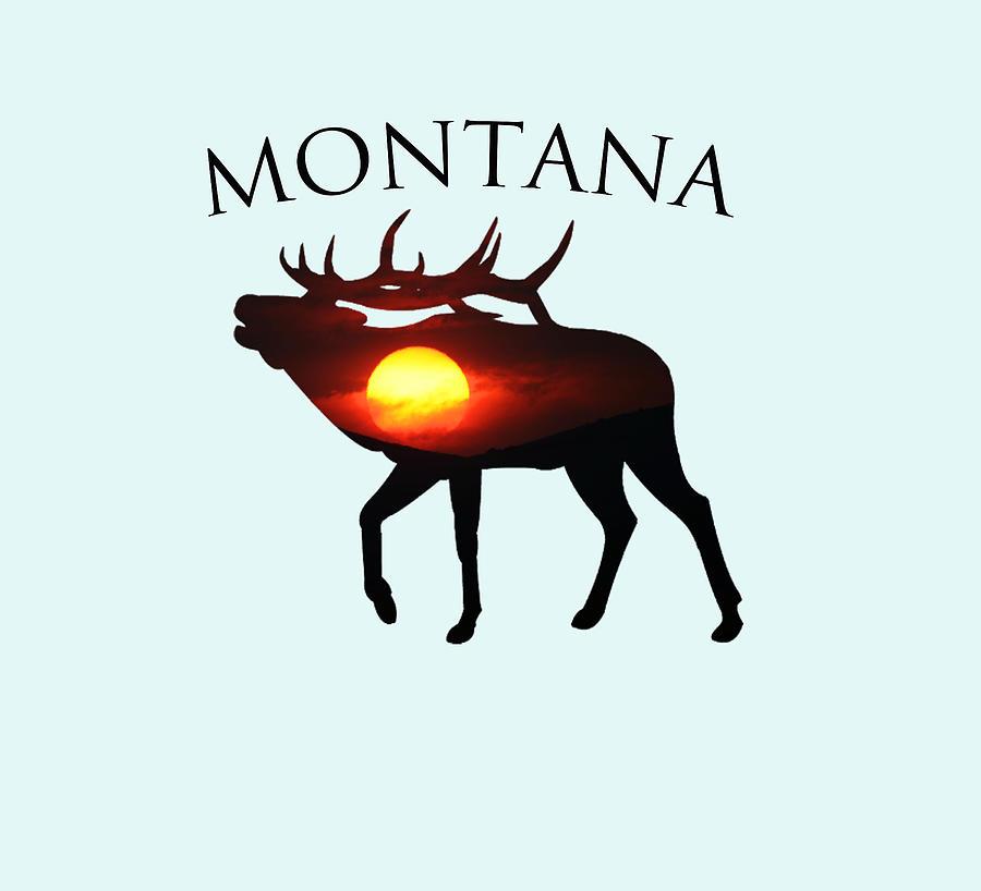 Sunrise Elk Of Montana Photograph