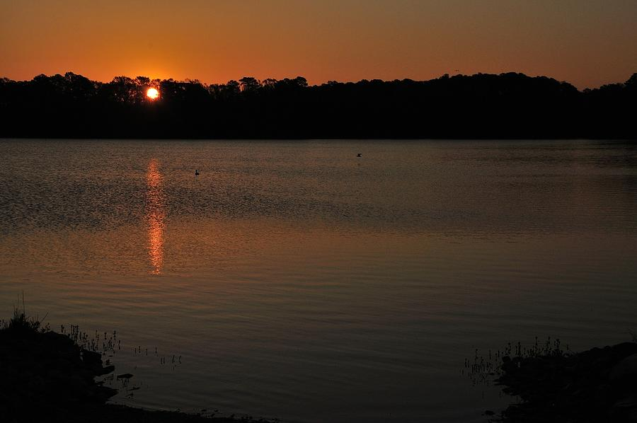 Sunrise On The Little Lake With Ducks Photograph