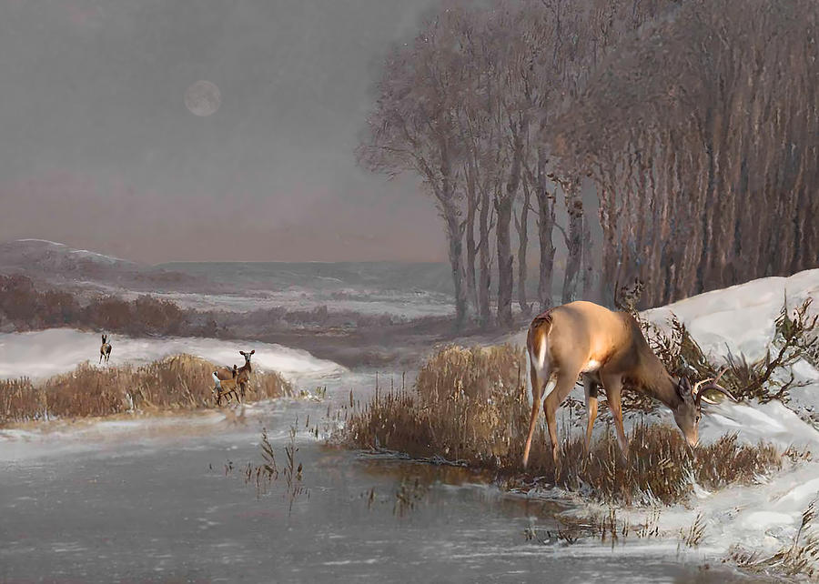 Sunrise on the Whitetail by Spadecaller