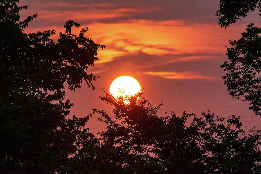 Sunrise Silhouette Photograph