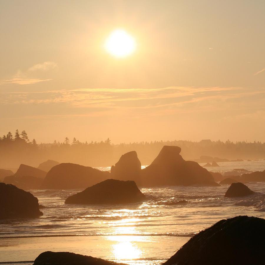Sunrise - White Point Beach, Hunts Point, NS by Trevor Slauenwhite