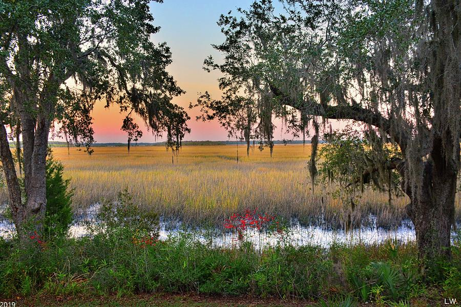 Sunset And The Oak Trees by Lisa Wooten