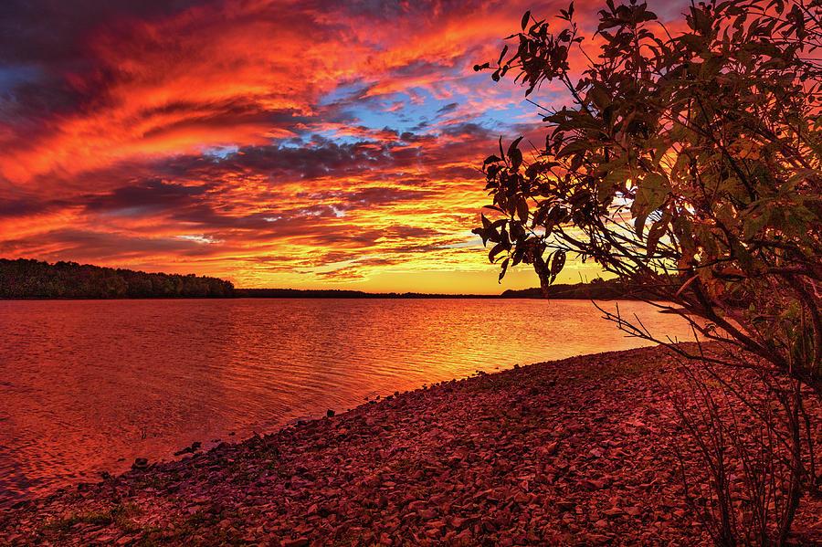 Sunset at Fellows #2 by Allin Sorenson