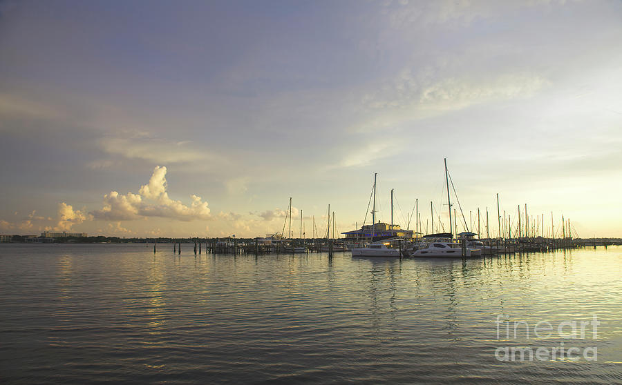 Manatee Photograph - Sunset At Marina by Felix Lai