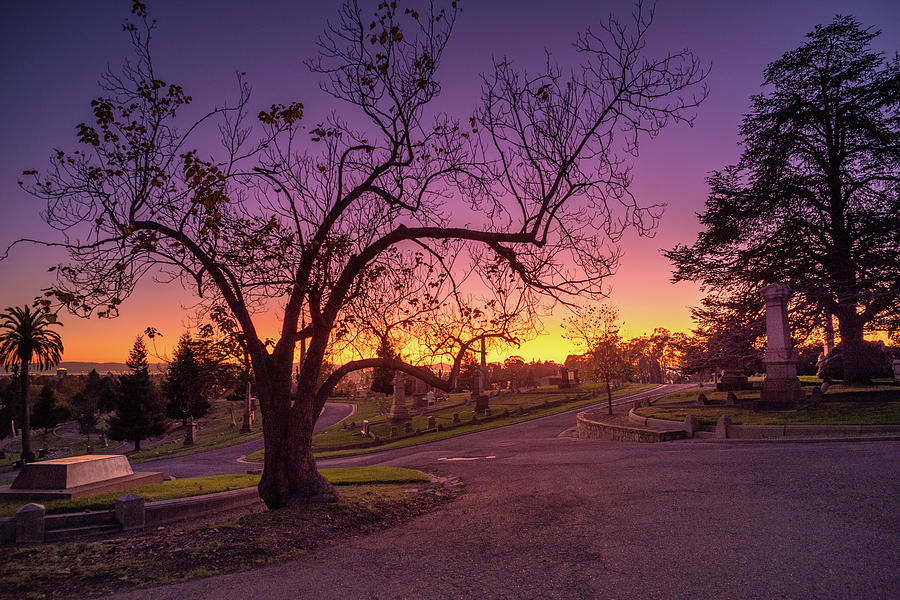 Sunset at Mountain View Cemetery by Laura Macky