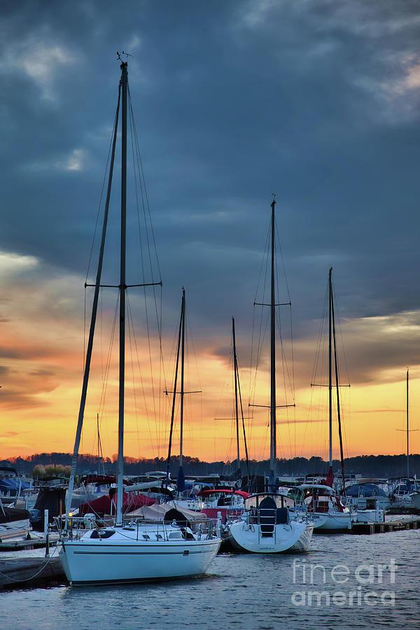 Sunset at the Marina by Amy Dundon