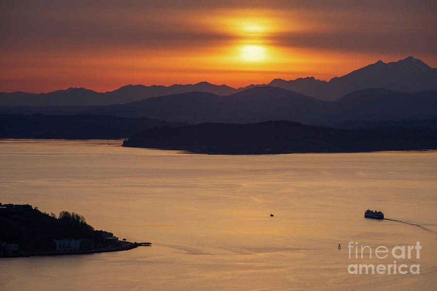Sunset Ferry Heading To Bremerton Photograph